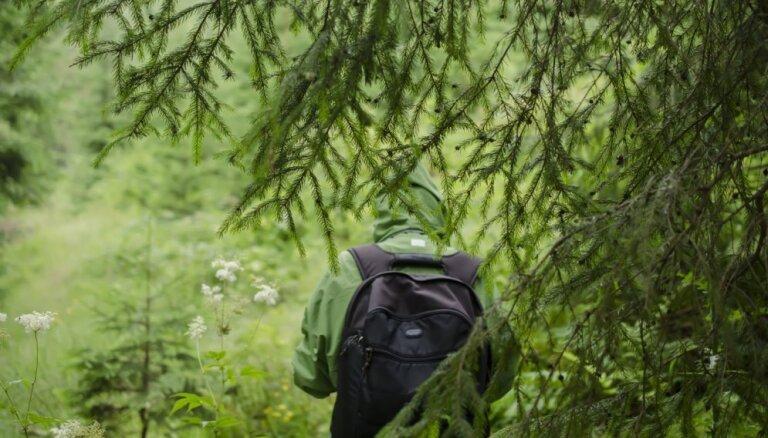 Latvijā top jauns garās distances pārgājienu maršruts – 'Mežtaka'