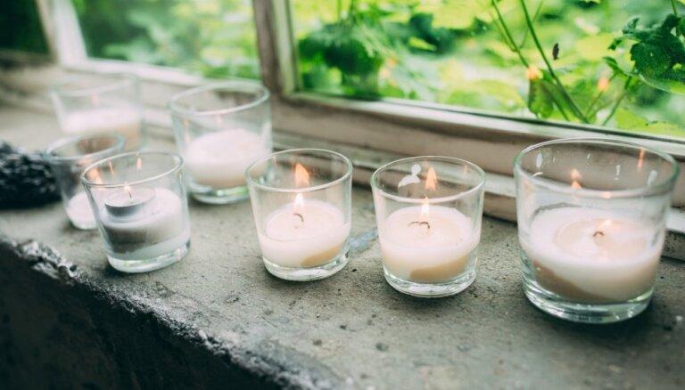 ФОТО. Не только цветы: 11 идей для украшения подоконника в доме