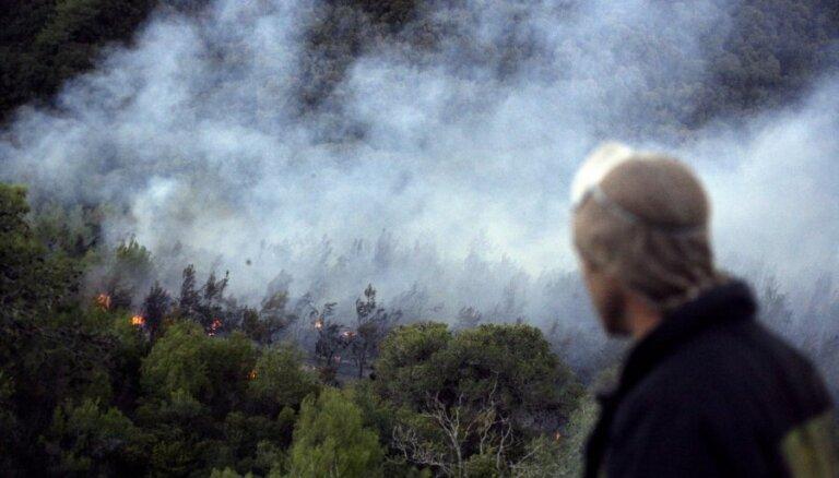 Sīrijā 24 cilvēki sodīti ar nāvi par savvaļas ugunsgrēku izraisīšanu