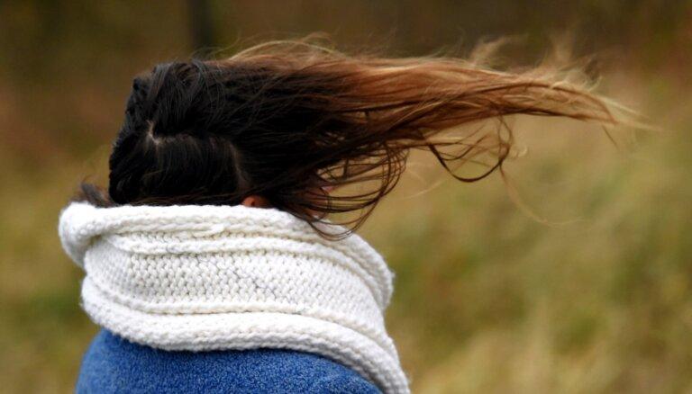 """Для Курземе объявлено """"оранжевое"""" предупреждение, сила ветра превысит отметку """"буря"""""""