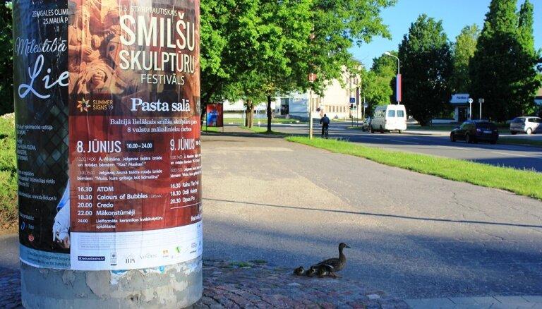 ФОТО: Утка с утятами переходят дорогу в центре Елгавы