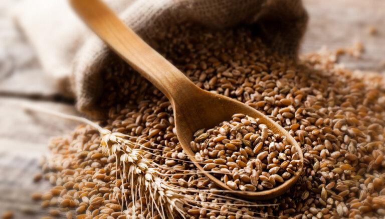 Урожай зерновых в Латвии за последний год сократился на 23%