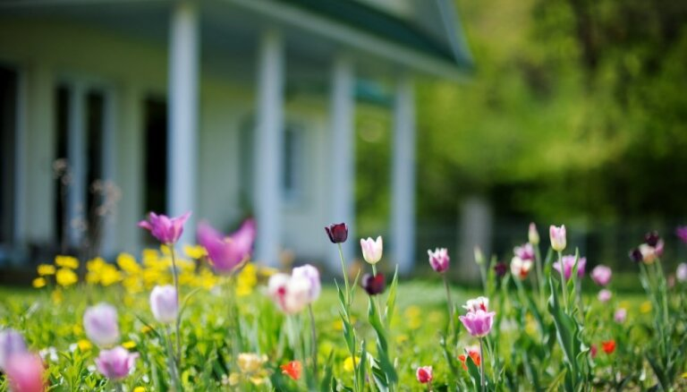 Mājās darāmie darbi, pavasari sagaidot