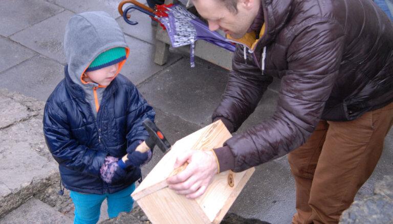 Rīgas zoodārzā varēs izveidot putnu būrīšus
