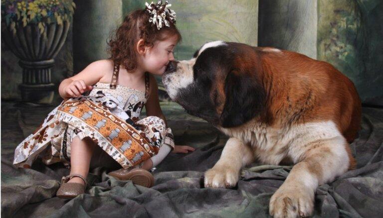 Лучшие друзья детей, защитники и пастухи: топ-10 самых больших в мире собак