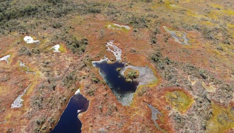 Videolekcija: Kas ir biosfēras rezervāts