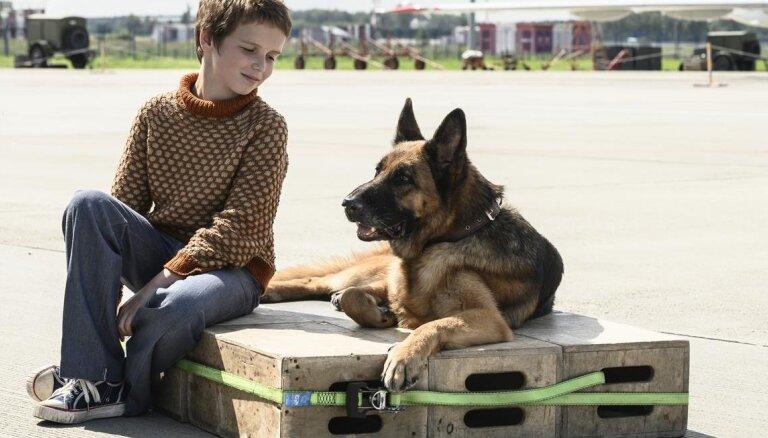 Drīzumā kinoteātros: patiess stāsts par Palmu – suni, kas lidostā gaidīja saimnieku