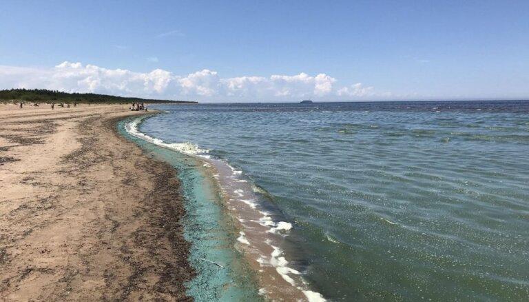 Vakarbuļļu, Daugavgrīvas un Vecāķu pludmalēs var droši peldēties