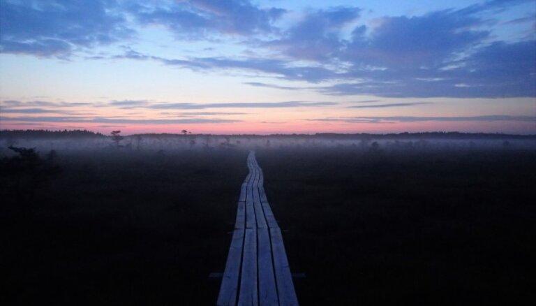 Mierpilnā Dunikas purva taka, kas stiepjas piecu kilometru garumā