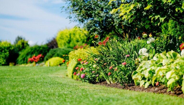 Садовые курсы в мае: полезные лекции и профессиональные курсы