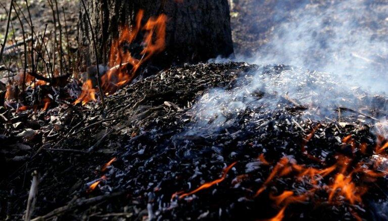 Siguldas novadā un Engurē turpinās meža ugunsgrēka dzēšana