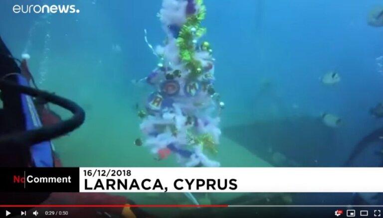 ВИДЕО. На Кипре новогоднюю елку установили на дне моря