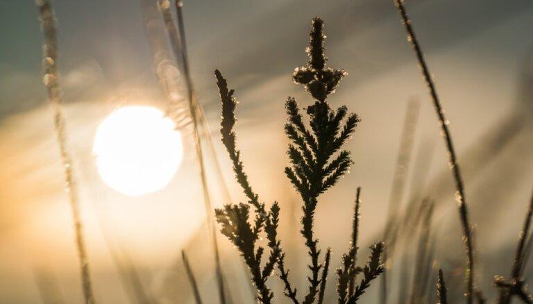 Cиноптики: во вторник ожидаются дожди и усиление ветра, к вечеру похолодает