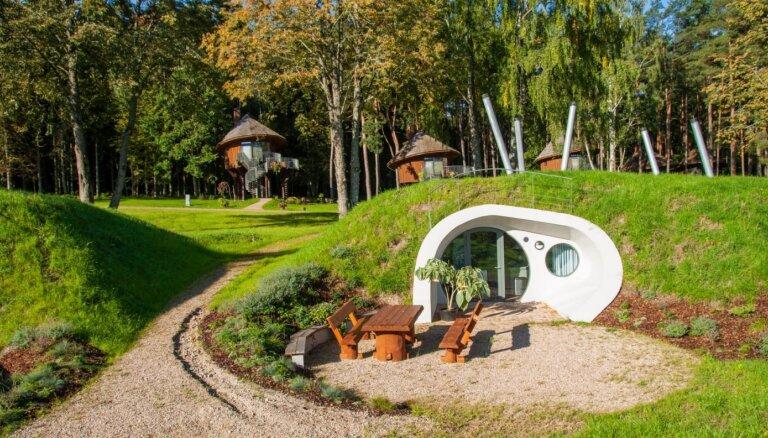 ФОТО. Глэмпинг в Тервете: домики на деревьях с видом на водохранилище
