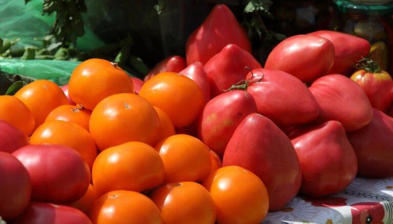 Рижская дума одобрилa создание нового продовольственного рынка в Иманте