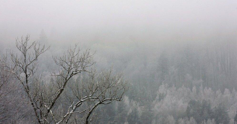 На следующей неделе в Латвии наступит метеорологическая осень