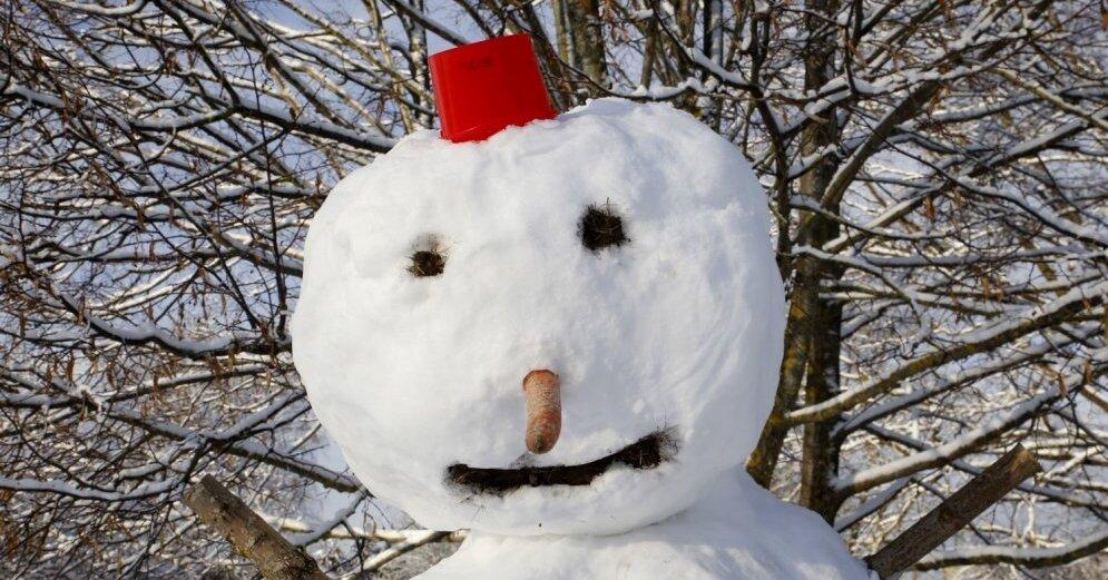 Количество дней со снежным покровом этой зимой - самое маленькое за 60 лет
