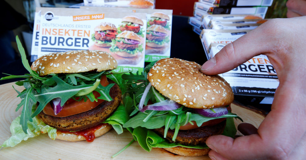 В Германии представлен первый бургер из насекомых: из чего он состоит
