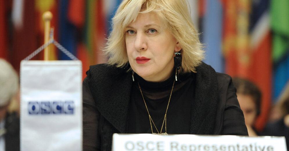 Комиссар Совета Европы: Языковая политика должна защищать права меньшинств