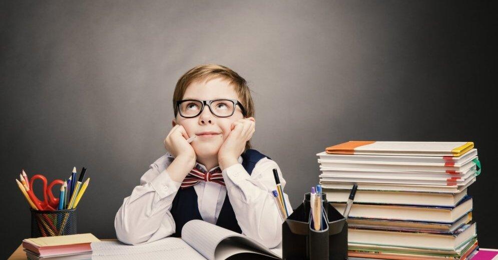 В школах Мордовии к 2020 году не будет второй смены