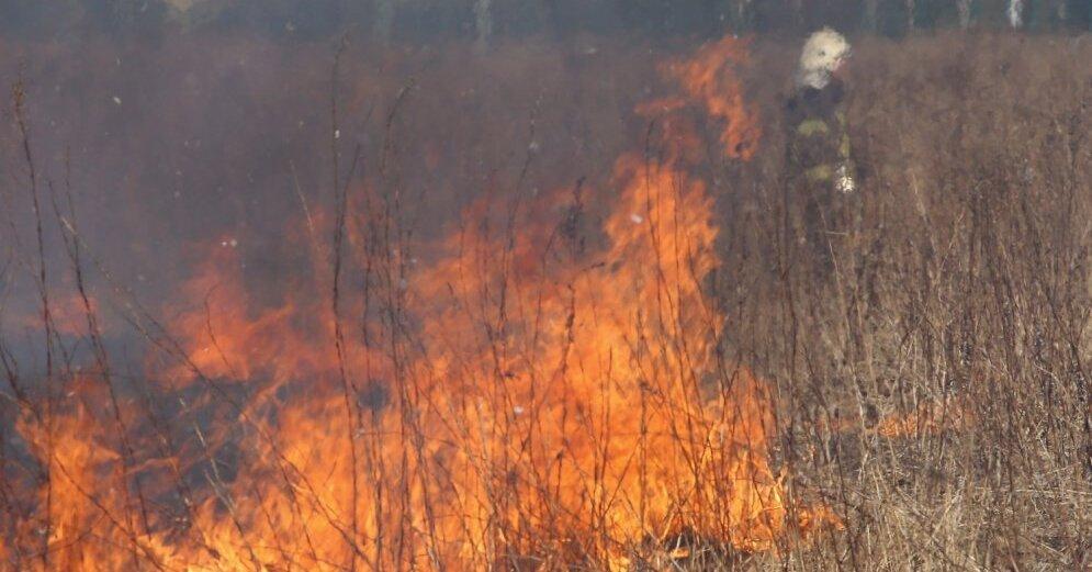 В Лиепае в пожаре погиб человек