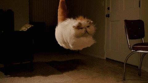Ar neredzamu burvju paklāju...
