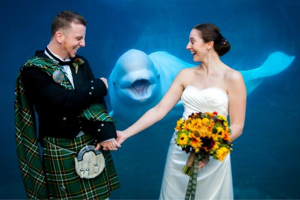 """""""Фотобомбы"""": 17 свадебных фото, на которых что-то пошло не так"""
