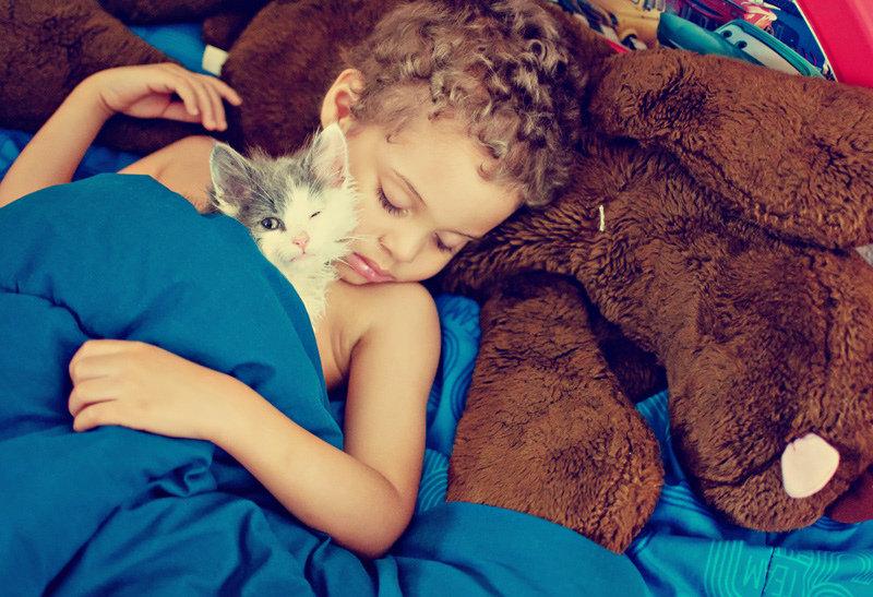 Детки и котики — лучшие друзья: 14 абсолютно мимишных фотографий